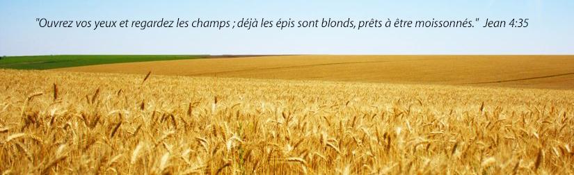 blé fr ewm